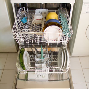 Dishwasher open 300