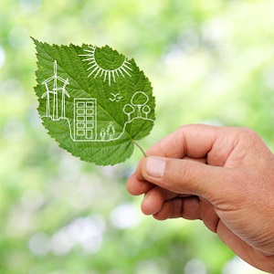 Symrise Certified as a Green Company by DQS