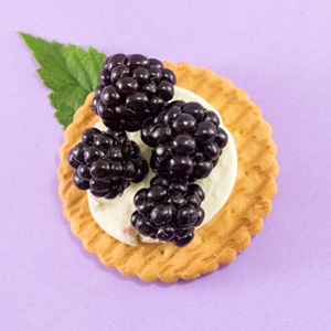 Flavor Labs Releases Natural Blackberry Flavor