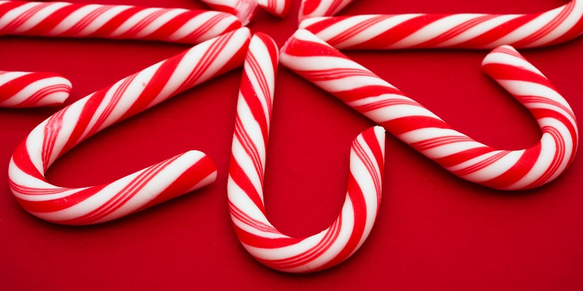 A whole bunch of candy canes