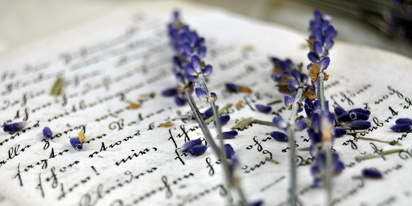 Lavendar on an old book