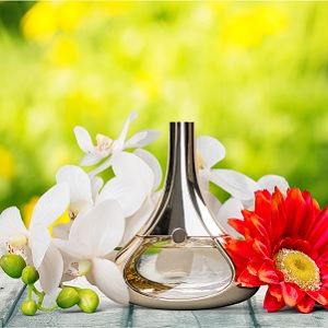 Perfume and spices