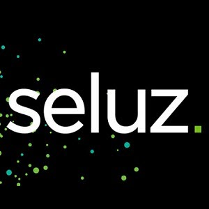Seluz business logo