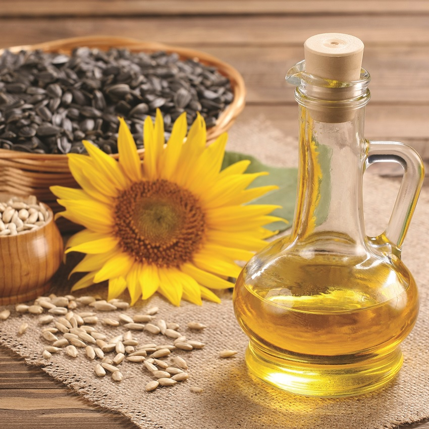 Sunflower plants and oil
