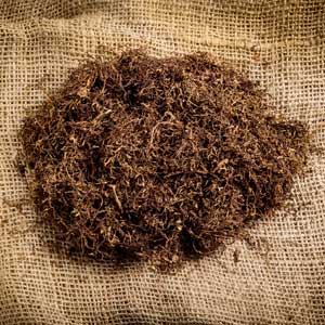 Raw Material of the Week: Tobacco Extract, FG