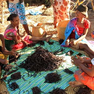 Sustainability in Madagascars Vanilla Supply Chain